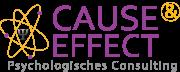 Cause&Effect Unternehmensberatung